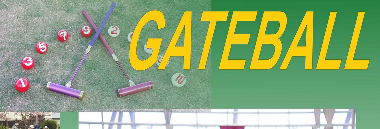 Ismerkedjen meg a Gateball játékkal